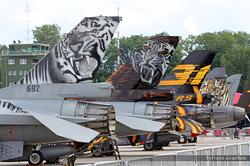 Tiger, Tiger, Tiger !!!