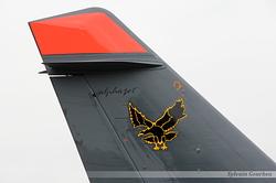 GM 1/9 Aigle Noir