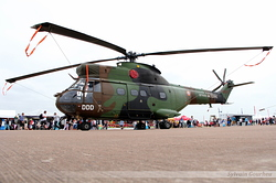 Aérospatiale SA-330B Puma Armée de Terre 1198 / DDD / F-MDDD