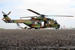 NH90-TTH Caïman Armée de Terre 1307 / EAL / F-MEAL