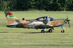 SIAI Marchetti SF 260 F-GMRF