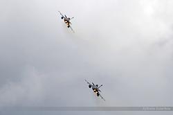 Dassault Rafale M Marine Nationale 9 & 14
