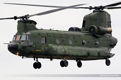 Boeing CH-47D Chinook Netherlands Air Force D-667