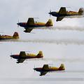 Romanian Aerobatic Team