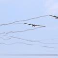 IAR IS-28B2 Romanian Airclub YR-3930 & YR-3940