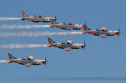 Aerobatic Team Orlik