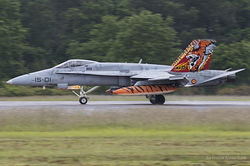 McDonnell Douglas EF-18M Hornet Spanish Air Force C.15-14 / 15-01