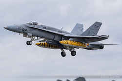 McDonnell Douglas EF-18M Hornet Spanish Air Force C.15-37 / 15-24